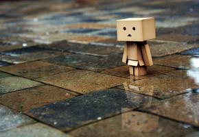 rain wallpapers, tiles, man, Danbo, box, boxed, sadness, Miscellaneous, photo