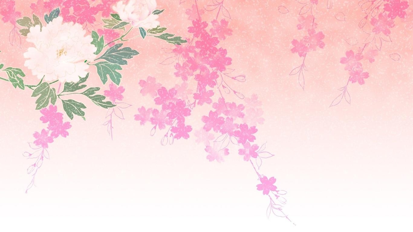 Fondos de pantalla color rosa fondo flor blanca una rama for Fondos de pantalla rosa