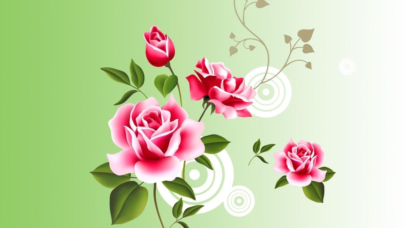 fondos de pantalla rosas con bordes blancos ramas c rculos 3d