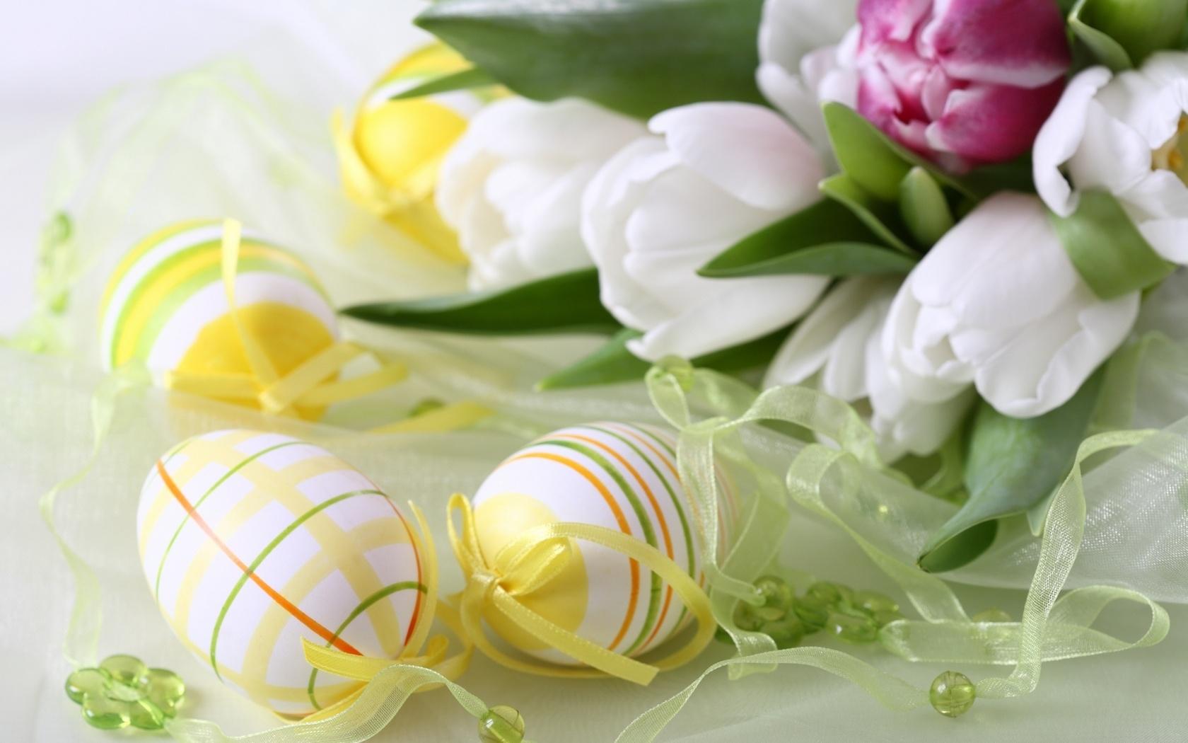 Eier ostern blumen urlaub tulpen blumen foto 1680x1050 flowers